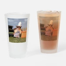 Cookout Drinking Glass