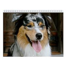 Australian Shepherd Calendar