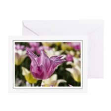 Pink Tulip Greeting Cards (Pk of 10)