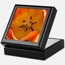 Orange Tulip Keepsake Box