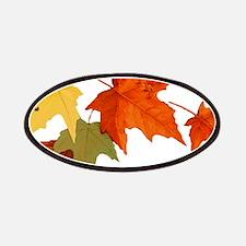 Autumn Colors Patches