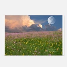 Evening Fields Postcards (Package of 8)