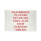Bridge game Magnets