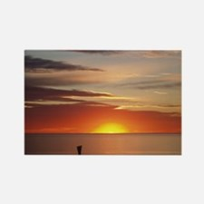elph Hallett cove,S.A. sunset Rectangle Magnet