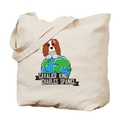 Nature Conserves and Recycles Cinch Sack