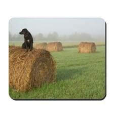 Dog on a Hay Bale Mousepad