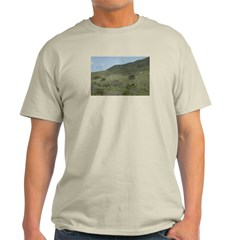 Pacific Coast Ash Grey T-Shirt