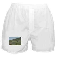Pacific Coast Boxer Shorts