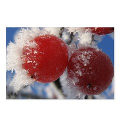 Ukrainian winter macro Postcards (Package of 8)