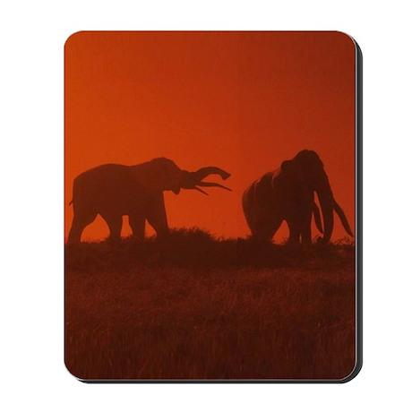 African Elephants Mousepad