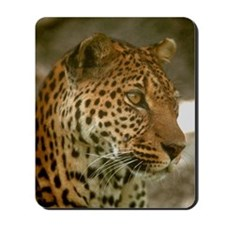 Wild Cat Mousepad