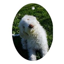 Labradoodle Ornament (Oval)
