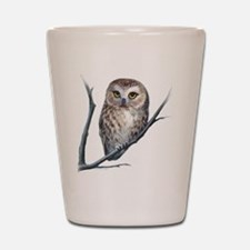 saw-whet owl Shot Glass