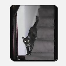 Cat Descending as Water Color 2 Mousepad