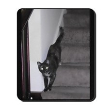 Cat Descending as Water Color Mousepad