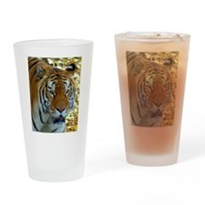 Orange stripes Drinking Glass