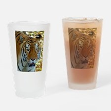 Funny Cat animals Drinking Glass