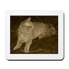 Elegant Profile in Sepiatone Mousepad