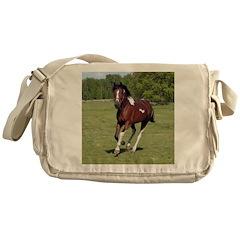 Pinto Foxtrotter Messenger Bag