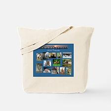 MWHC Tote Bag