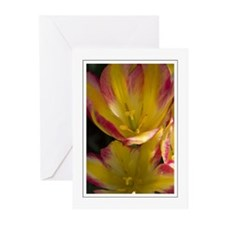 Red & Yellow Tulip Greeting Cards (Pk of 10)