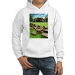 Angkor Wat Ruined Causeway Hooded Sweatshirt
