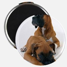 """Boxers 2 2.25"""" Magnet (10 pack)"""