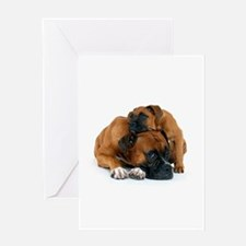 Boxer 3 Greeting Card