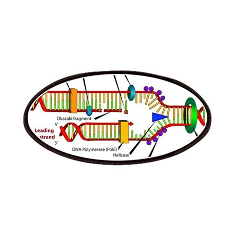 DNA Synthesis Patches