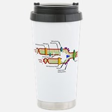 DNA Synthesis Stainless Steel Travel Mug