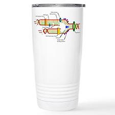 DNA Synthesis Travel Mug