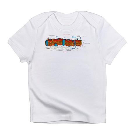 Cell Membrane Infant T-Shirt