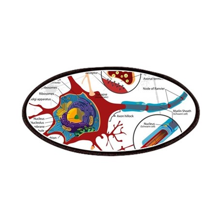 Neuron cell Patches