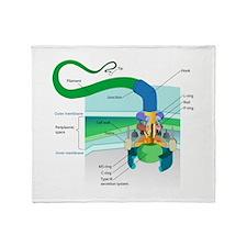 Morphology Throw Blanket