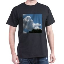 Poodle in Clouds? T-Shirt