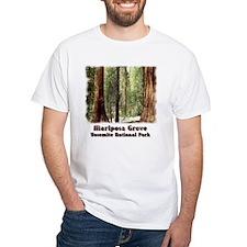 Mariposa Grove t-shirt--white