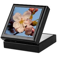 Evening Blossom Keepsake Box