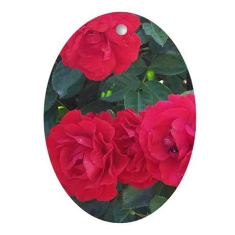 So Red The Rose Oval Ornament