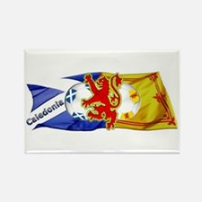 Scotland Football Fashion Rectangle Magnet (10 pac