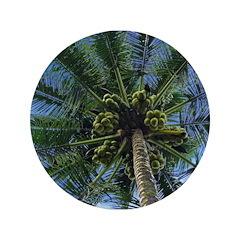 "Coconut Palm 3.5"" Button (100 pack)"