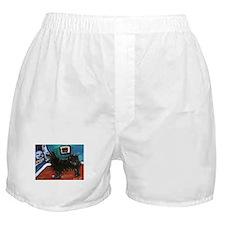 SWEDISH LAPPHUND whimsical do Boxer Shorts