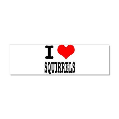 I Heart (Love) Squirrels Car Magnet 10 x 3