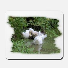 DUCKS IN THE POND Mousepad