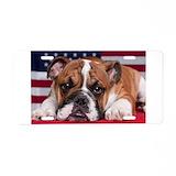 Bulldog License Plates