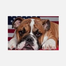 Patriotic Bulldog Rectangle Magnet