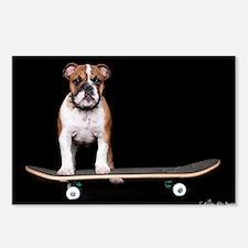 Skateboard Bulldog Postcards (Package of 8)