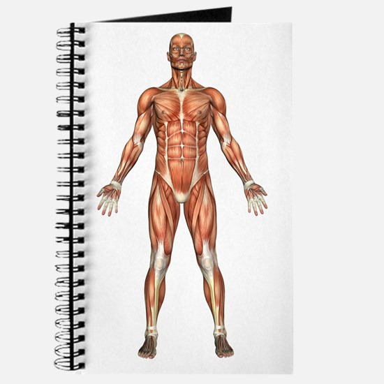 Visible Man Journal