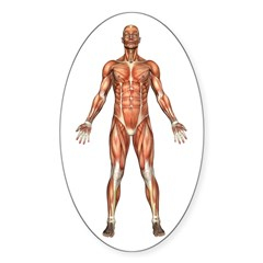 Visible Man Oval Decal