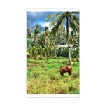 Horse in a Tropical Pasture 38.5 x 24.5 Wall Peel