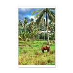Horse in a Tropical Pasture 22x14 Wall Peel